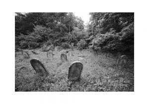 Bolešov - židovský cintorín