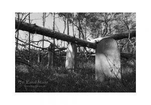 Borský Mikuláš - židovský cintorín