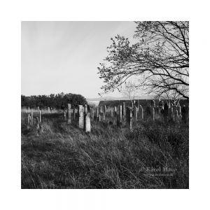 Reca - židovský cintorín 2021